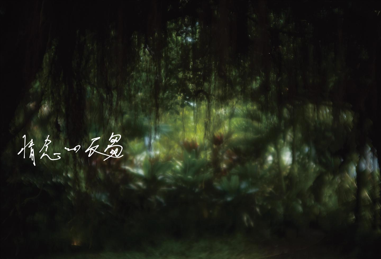 湿った光に絡みつく情念と自然(c) Yoichi Ochiai